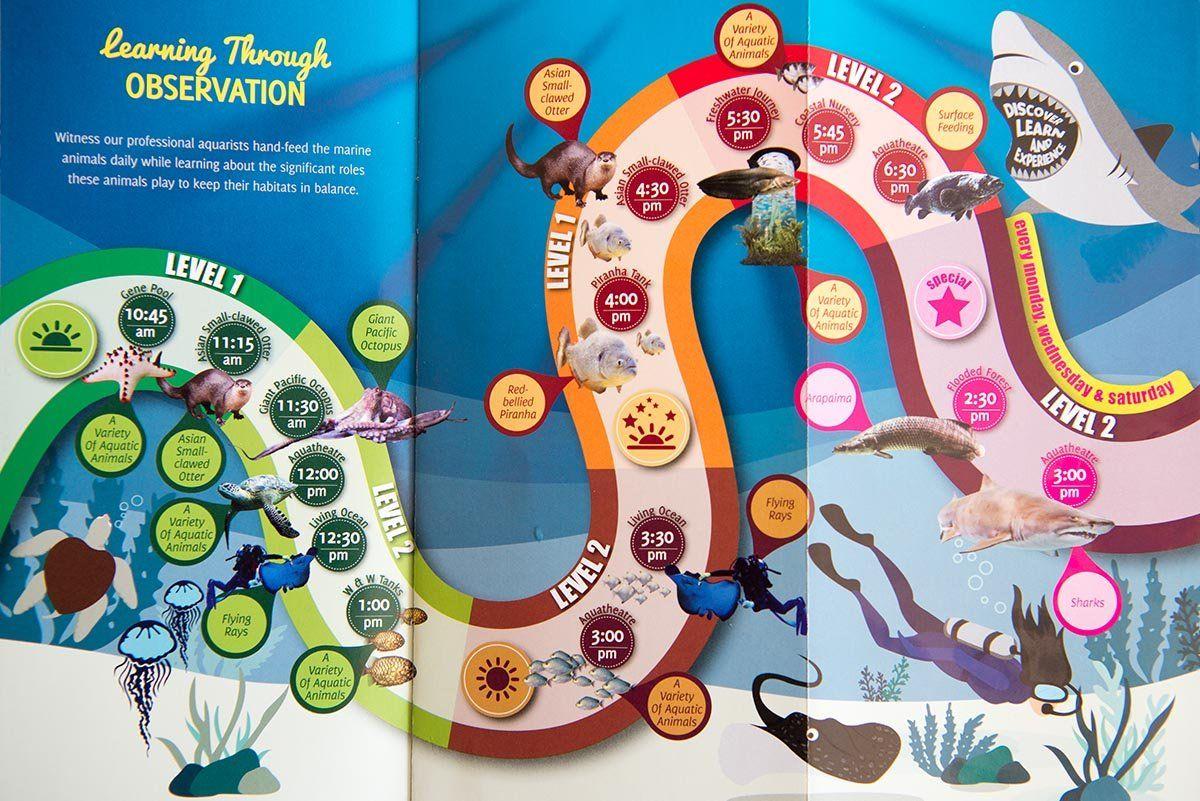 Расписание кормлений обитателей океанариума | Океанариум Куала Лумпура (Aquaria KLCC) – как получить максимум впечатлений | Эксперт по путешествиям AsiaPositive.com