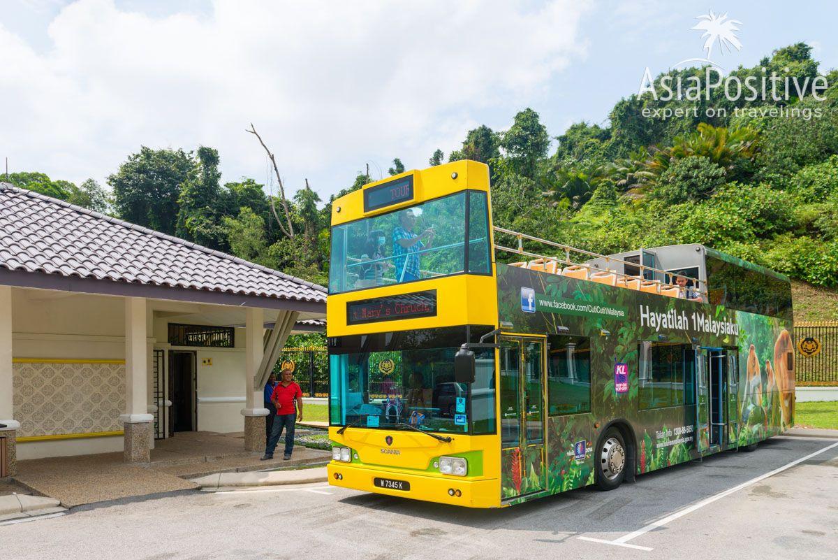 Экскурсионный автобус KL Hop-On Hop-Off City Tour | Виды автобусов в Куала-Лумпуре, как ими пользоваться и как можно ездить на автобусе по достопримечательностям Куала-Лумпура бесплатно.| Автобусы в Куала-Лумпуре (Малайзия): рейсовые, туристические и бесплатные | Путешествия по Азии AsiaPositive.com