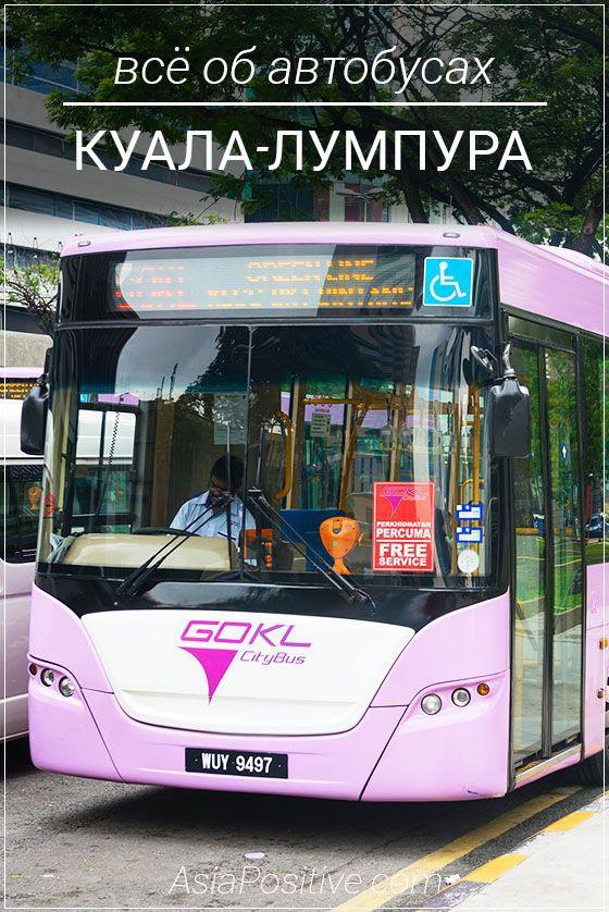 Виды автобусов в Куала-Лумпуре, как ими пользоваться и как можно ездить на автобусе по достопримечательностям Куала-Лумпура бесплатно.| Автобусы в Куала-Лумпуре (Малайзия): рейсовые, туристические и бесплатные | Путешествия по Азии AsiaPositive.com