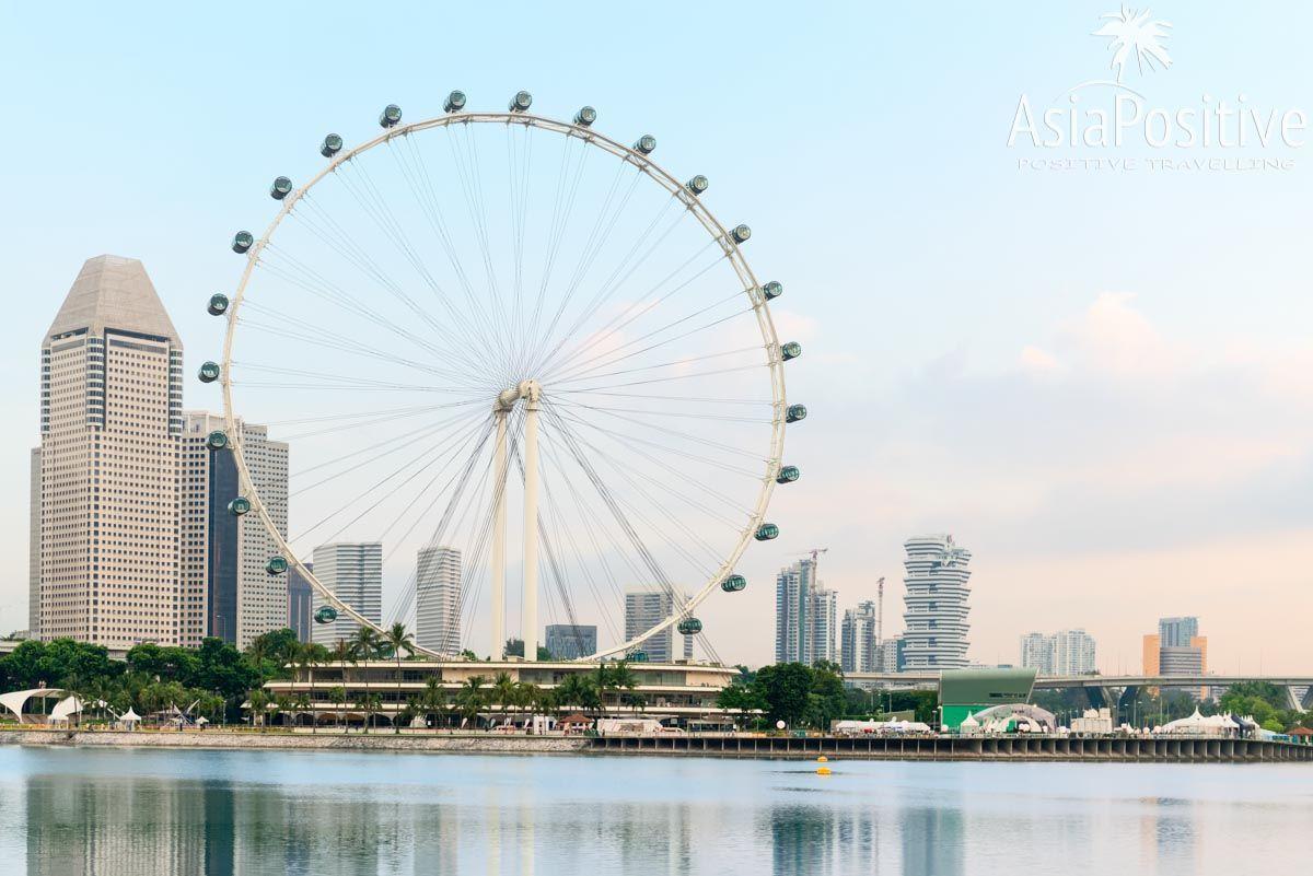 Singapore Flyer расположено на набережной и возвышается над другими зданиями | Как купить билеты со скидкой, как добраться и почему строит побывать на колесе обозрения Singapore Flyer, одной из самых популярных достопримечательности Сингапура. | Путешествия по Азии с AsiaPositive.com