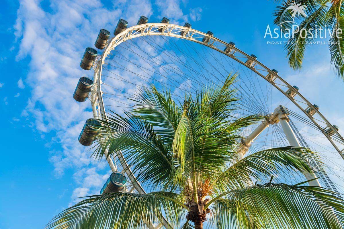 Каждая из 28 кондиционированных кабинок колеса обозрения Singapore Flyer рассчитаны на 28 пассажиров | Как купить билеты со скидкой, как добраться и почему строит побывать на колесе обозрения Singapore Flyer, одной из самых популярных достопримечательности Сингапура. | Путешествия по Азии с AsiaPositive.com