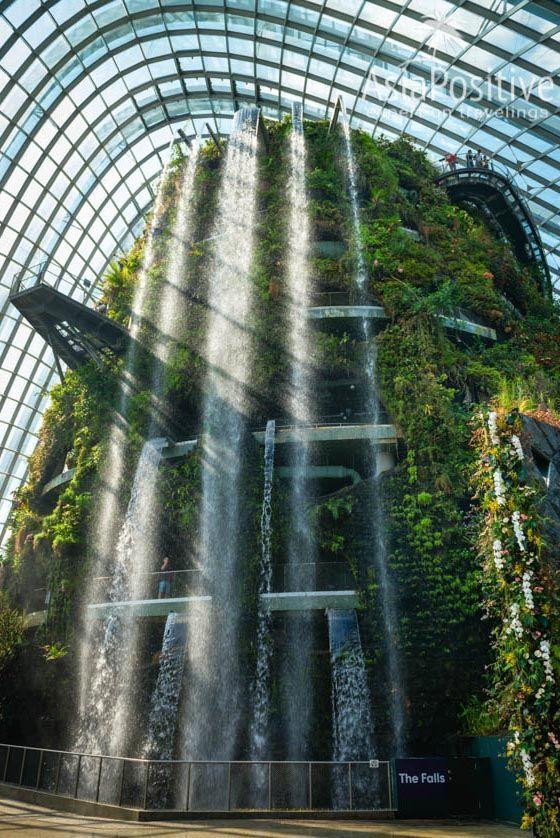 Водопад в садах Gardens by the Bay | Когда лучше ехать, как выбирать отель в Сингапуре, на сколько дней ехать, когда и как лучше покупать тур в Сингапур, и что выгоднее и удобнее тур или самостоятельно организованная поездка. | Туры в Сингапур: детальный гид по турам | Путешествие по Азии с AsiaPositive.com