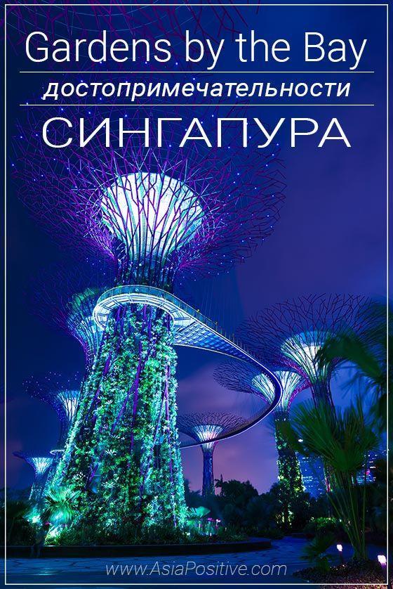 Тропический парк, который поражает воображение - Сады у залива | Сказочная достопримечательность Сингапура - парк Gardens by the Bay | Эксперт по путешествиям AsiaPositive.com