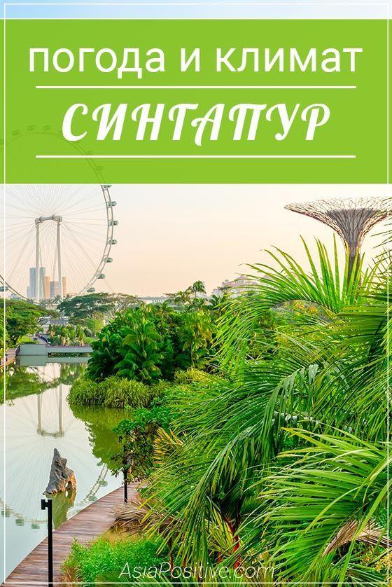 Особенности дождливого, жаркого, влажного экваториального климата Сингапура. О чём важно помнить туристам в Сингапуре, что стоит с собой взять на прогулку. | погода и климат в Сингапуре | Эксперт по путешествиям AsiaPositive.com