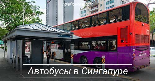 Автобусы в Сингапуре: рейсовые и туристические