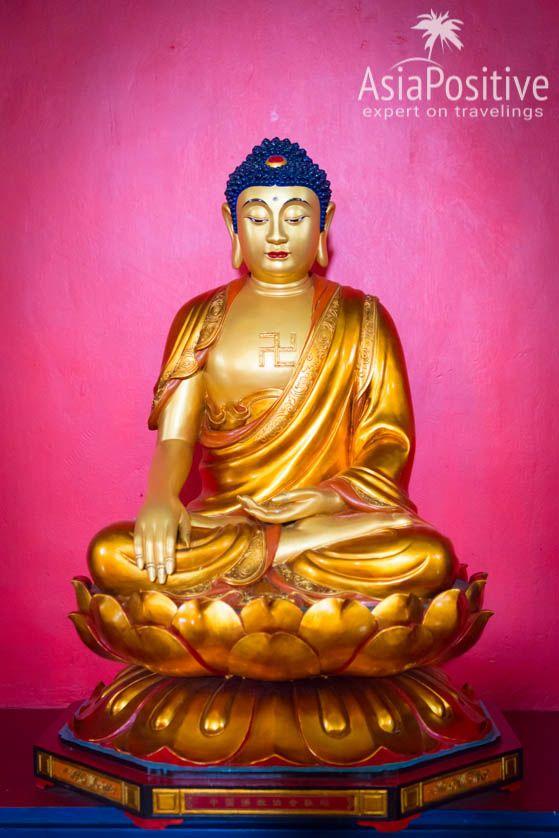 Статуя Будды из Северной Кореи в Мудее Буддизма в Дамбулле | Что стоит посмотреть в Дамбулле кроме знаменитого Золотого Пещерного Храма, где Дамбулла находится на карте Шри-Ланки, информация о транспорте и подборка лучших отелей Дамбуллы на любой бюджет| Дамбулла (Шри-Ланка): что посмотреть, как добраться, где остановиться | Путешествия по Азии AsiaPositive.com