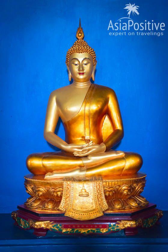 Статуя Будды из Таиланда в Мудее Буддизма в Дамбулле | Что стоит посмотреть в Дамбулле кроме знаменитого Золотого Пещерного Храма, где Дамбулла находится на карте Шри-Ланки, информация о транспорте и подборка лучших отелей Дамбуллы на любой бюджет| Дамбулла (Шри-Ланка): что посмотреть, как добраться, где остановиться | Путешествия по Азии AsiaPositive.com