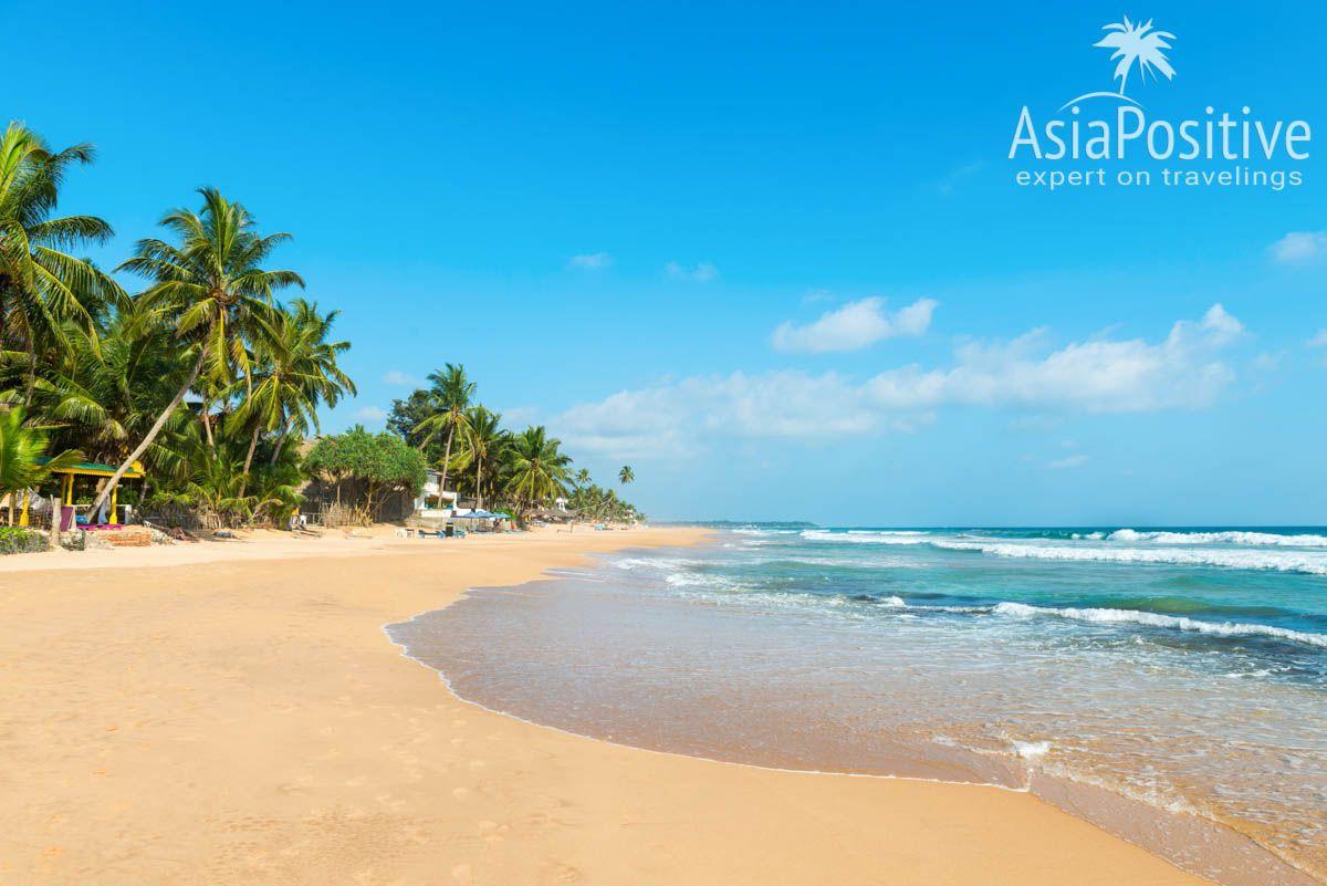 Хиккадува - один из самых популярных и красивых курортов Шри-Ланки | | Детальный план - маршрут для самостоятельного путешествия по самым интересным достопримечательностям и самым красивым местам Шри-Ланки и пляжного отдыха на 2 недели (12-14 дней). | Путешествия по Азии AsiaPositive.com