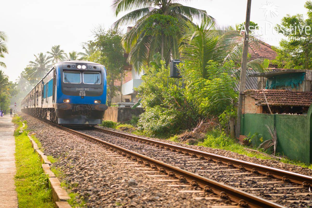 Поездка на поезде гораздо интереснее и увлекательнее трансфера на машине (Шри-Ланка) | Путешествия с AsiaPositive.com