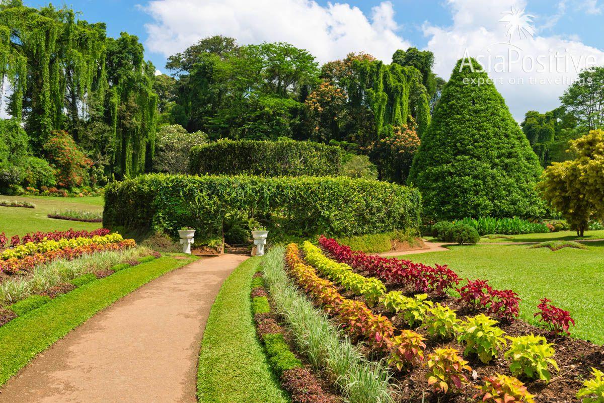 Королевский ботанический сад возле Канди | Детальный план - маршрут для самостоятельного путешествия по самым интересным достопримечательностям и самым красивым местам Шри-Ланки и пляжного отдыха на 2 недели (12-14 дней). | Путешествия по Азии AsiaPositive.com