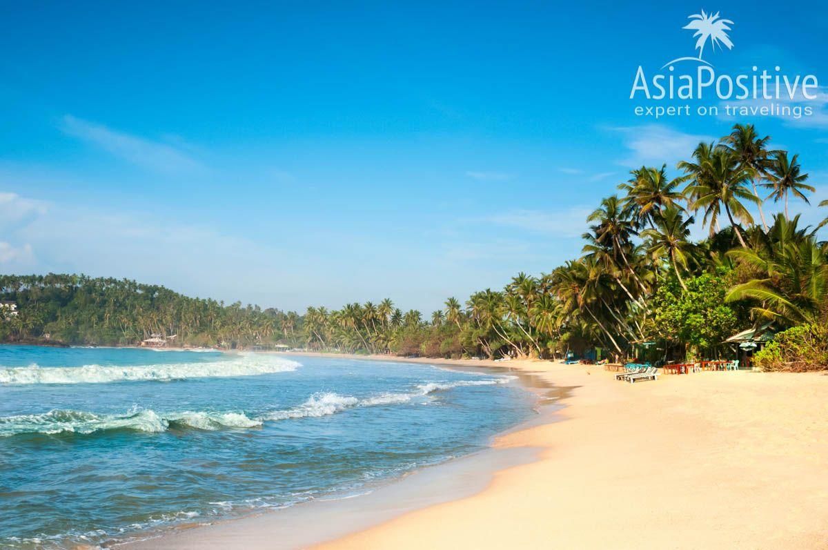 Пляж Мирисса (Шри-Ланка) | Путешествия AsiaPositive.com