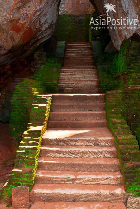Ступени между двух огромных камней | Сигирия - одна из самых знаменитых достопримечательностей Шри-Ланки. Сигирия на карте, фото, информация о транспорте и отелях Сигирии. | Сигирия (Шри-Ланка): что посмотреть, как добраться, где остановиться | Путешествия по Азии AsiaPositive.com
