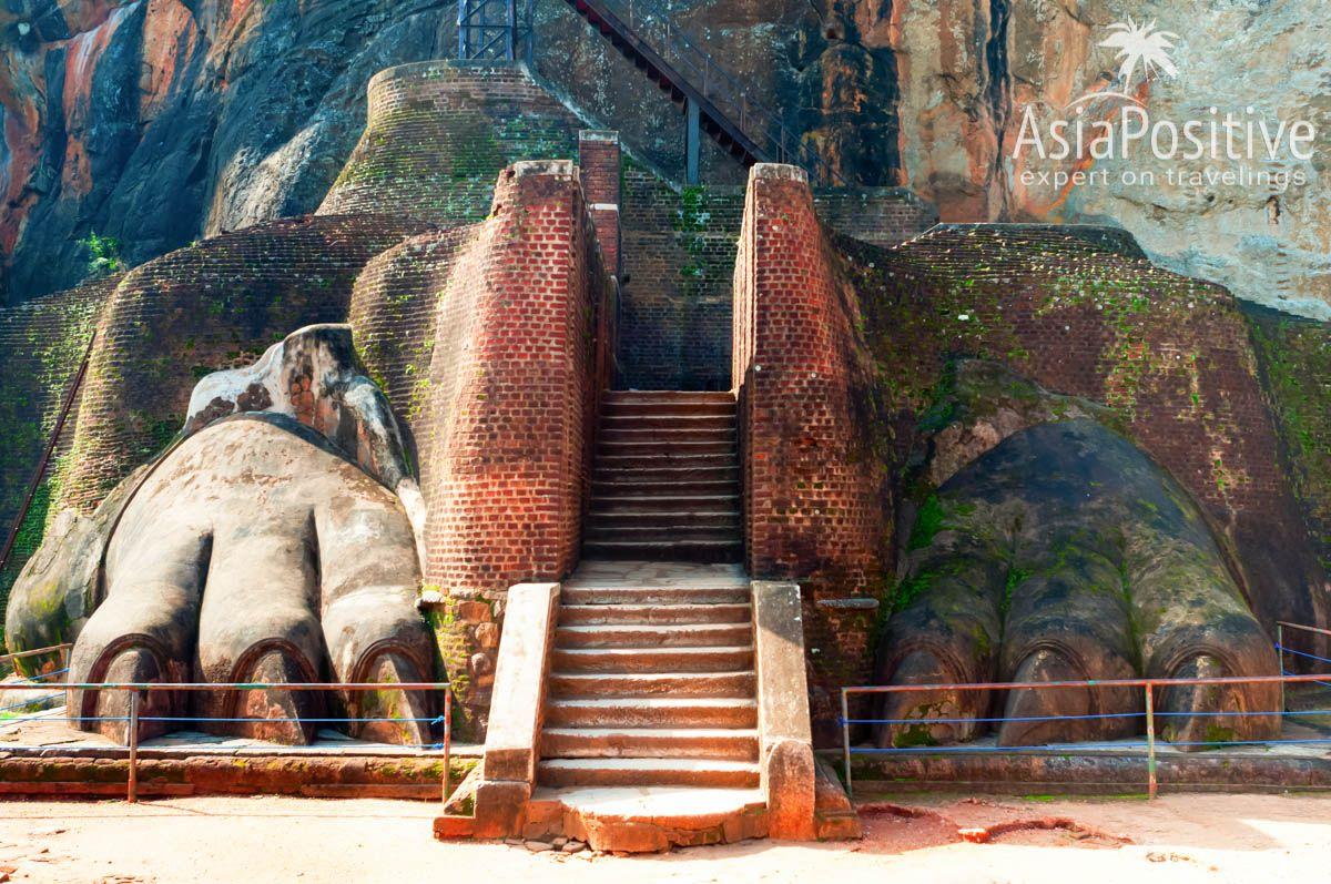 Львиные лапы и ступени на вершину скалы | Сигирия - одна из самых знаменитых достопримечательностей Шри-Ланки. Сигирия на карте, фото, информация о транспорте и отелях Сигирии. | Сигирия (Шри-Ланка): что посмотреть, как добраться, где остановиться | Путешествия по Азии AsiaPositive.com