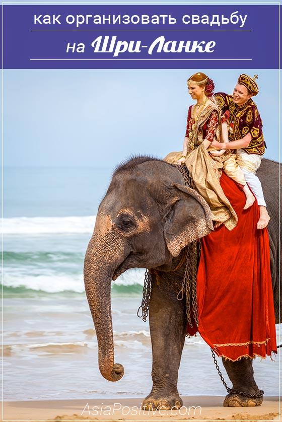 Если вы мечтаете о красивой, незабываемой, яркой свадьбе, то стоит собирать чемоданы и ехать на Шри-Ланку. Как выглядит свадьба на Шри-Ланке (с фото), сколько стоит такая свадьба и почему её стоит провести именно на Шри-Ланке. | Путешествия по Азии AsiaPositive.com