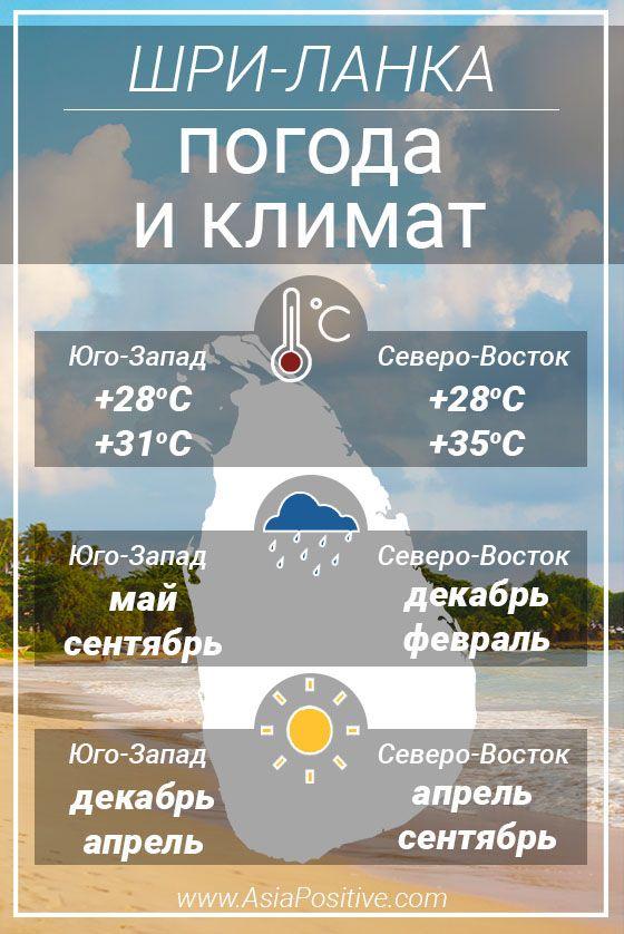 Инфографика погоды для планирования отдыха на Шри-Ланке | Погода и климат Шри-Ланки | Позитивные путешествия AsiaPositive.com