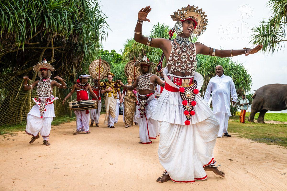 Песни, пляски и барабаны | Яркая свадьба на Шри-Ланке | Путешествия по Азии AsiaPositive.com