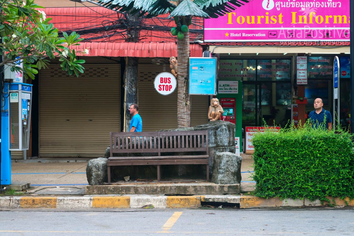 Bus stop just for beauty | Ao nang, Krabi, Thailand | Travel in Asia with AsiaPositive.com