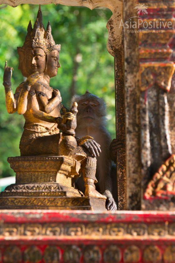 Статуя индуистского бога - творца Брахмы | Храм Пещера Тигра в Краби, Таиланд | Путешествия по Азии с AsiaPositive.com