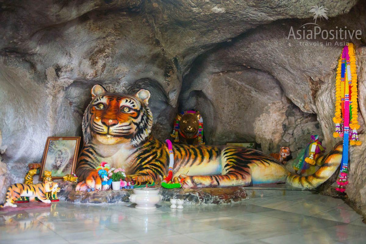 Крошечная пещера тигра | Wat Tham Seua (Tiger Cave Temple) | Путешествия с AsiaPositive.com