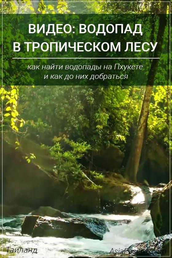 Как найти водопады на Пхукете и как до них добраться, видео с прогулки по тропическому лесу с водопадами. | Таиланд | Путешествия по Азии с AsiaPositive.com