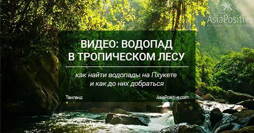 Видео с водопада в тропическом лесу на Пхукете