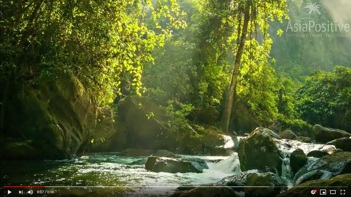Как найти водопады на Пхукете и как до них добраться, видео с прогулки по тропическому лесу с водопадами.