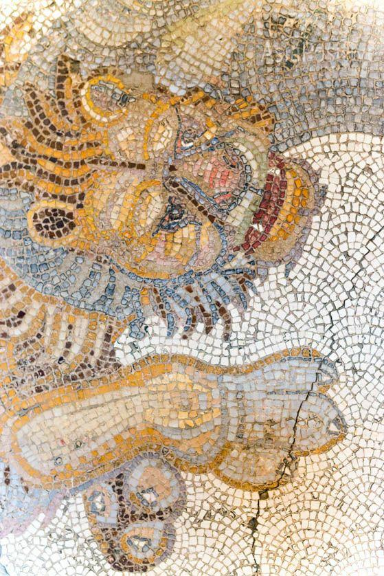 Close-up mosaic lion (Mosaics Museum in Istanbul) | Travel with AsiaPositive.com