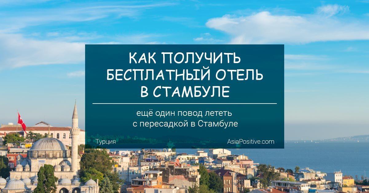 Как получить бесплатный отель в Стамбуле | Турция | Путешествия с AsiaPositive.com
