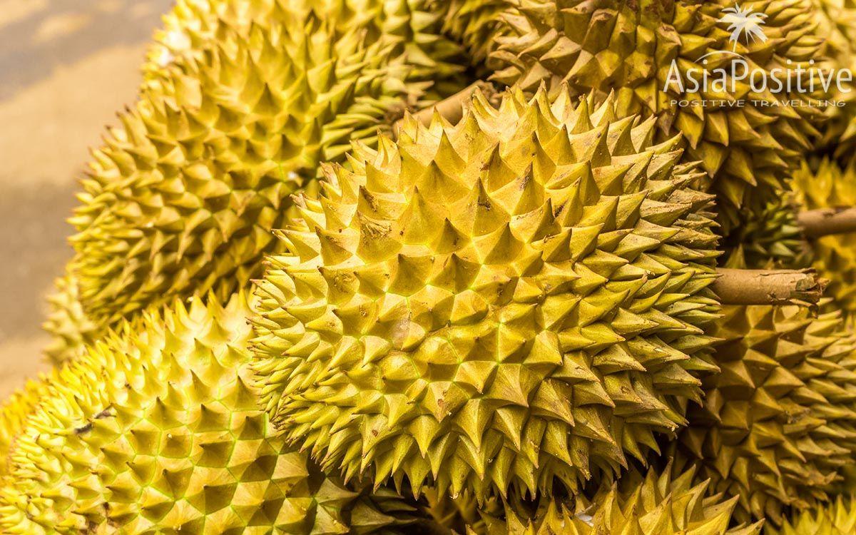 Дурианы во фруктовой лавке | Король фруктов - Дуриан. | Позитивные путешествия AsiaPositive.com