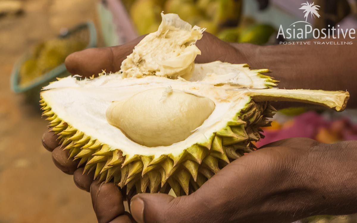Очищенная от кожуры мякоть дуриана | Король фруктов - Дуриан | Позитивные путешествия AsiaPositive.com