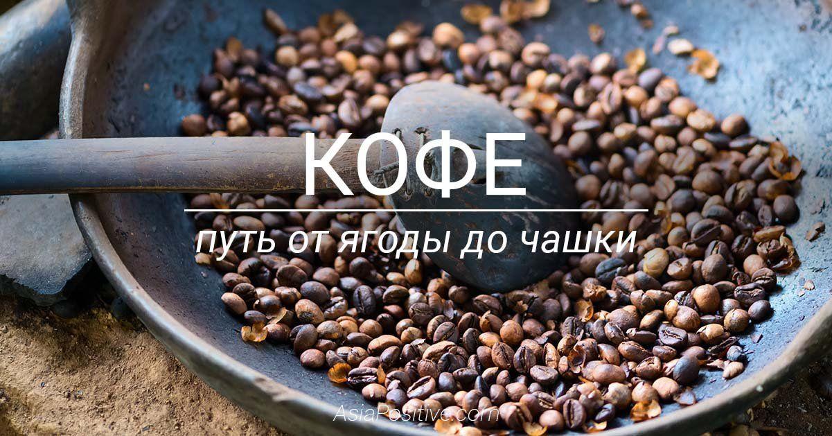 Путь кофе от ягоды до чашки