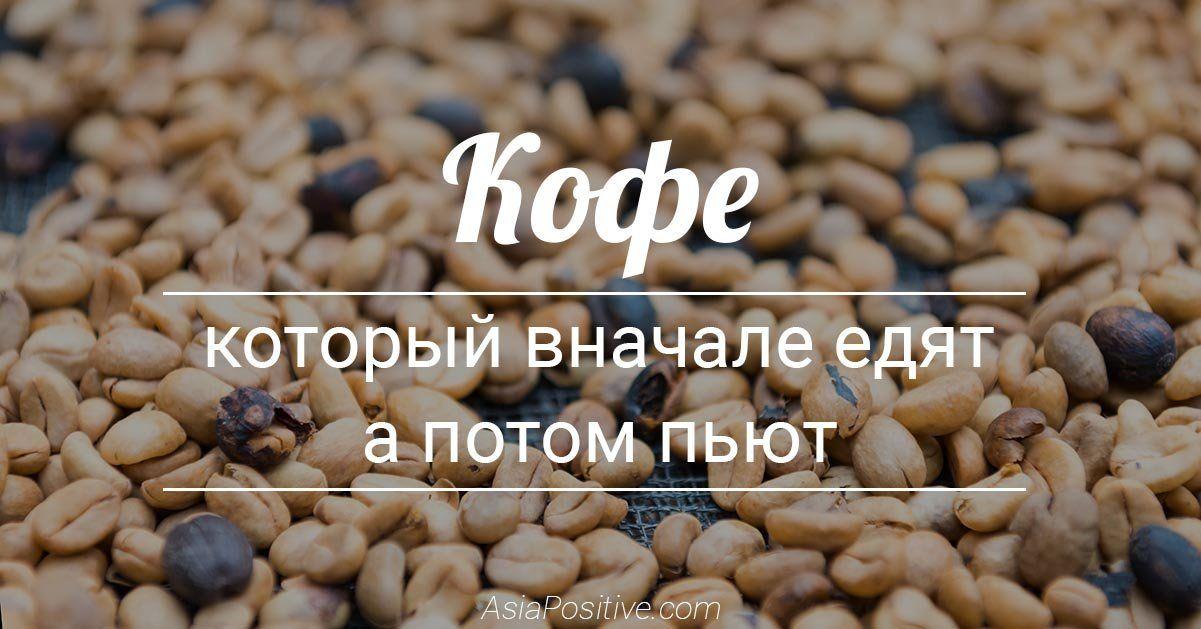 Кофе, который вначале едят, а потом пьют