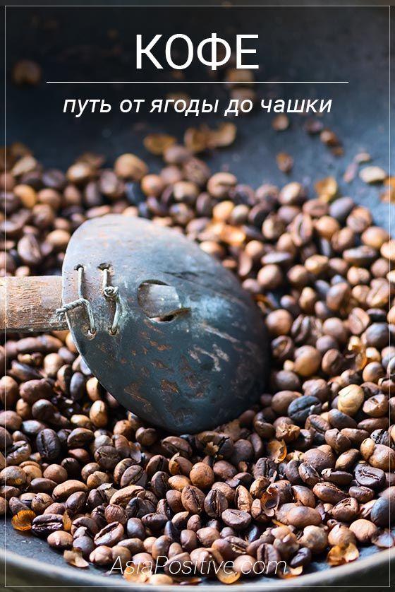 Путешествуя по Азии есть шанс увидеть, как выращивают, собирают и обрабатывают кофейные зёрна традиционными способами | Путь кофе от ягоды до чашки | Эксперт по путешествиям AsiaPositive.com