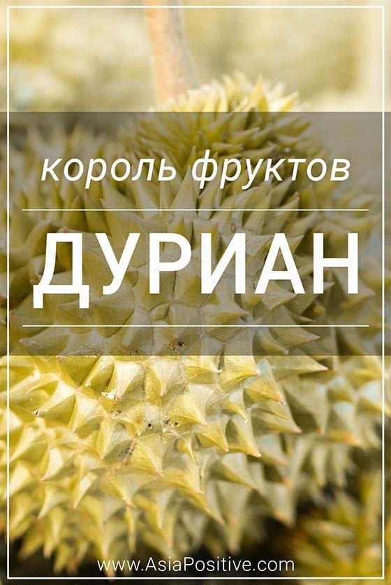Король фруктов - Дуриан | Позитивные путешествия AsiaPositive.com