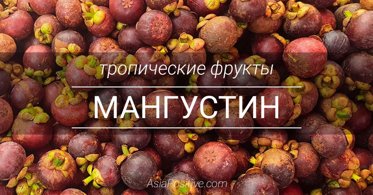 Тропический вкусный фрукт мангустин: как правильно выбирать и покупать, чистить и хранить мангустины. | Справочник туриста и интересные факты об Азии | Эксперт по путешествиям AsiaPositive.com
