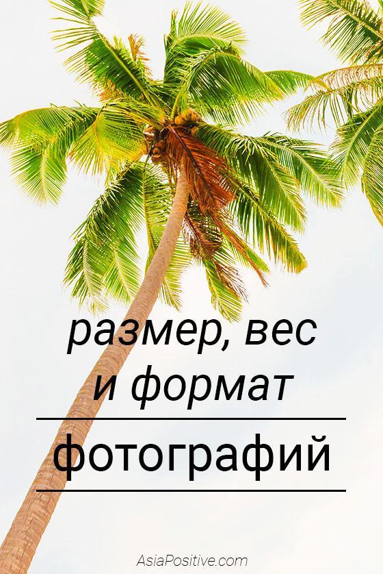 Програмку просмотра изображений формата jpg