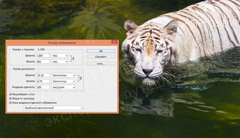 Как уменьшить размер фото в программе Adobe Photoshop | Фото и видео в Путешествии | Справочник туриста | Эксперт по путешествиям AsiaPositive.com