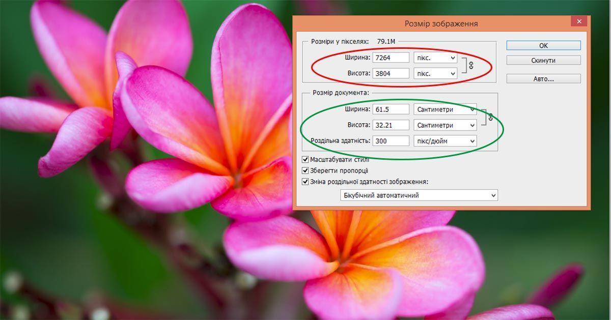 Размер фотографии в пикселях и сантиметрах в программе Photoshop | Что такое размер фото и вес файла, как они измерятся и от чего зависят. Формат фотографии JPG и RAW, что о них стоит знать. | Как узнать размер фото в сантиметрах | Позитивные путешествия AsiaPositive.com