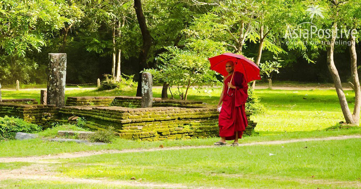 Зонтик может пригодиться не только во время дождя | Простые советы, навыки выживания в сезон дождей помогут пережить ливни в прекрасном расположении духа, и не потратив ни одной нервной клетки. | Навыки выживания в сезон дождей | Путешествия по Азии сAsiaPositive.com