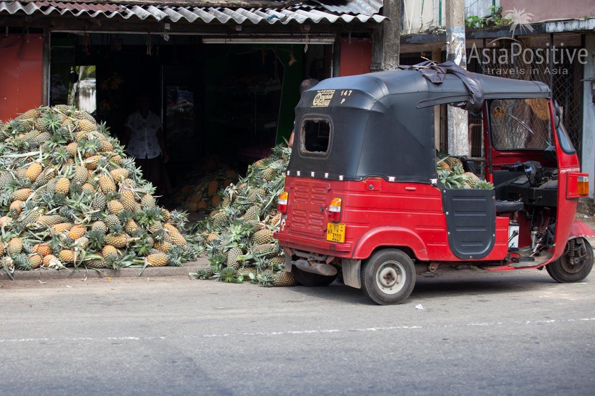 На Шри-Ланке на тук-туках переводят грузы | Путешествия с AsiaPositive.com