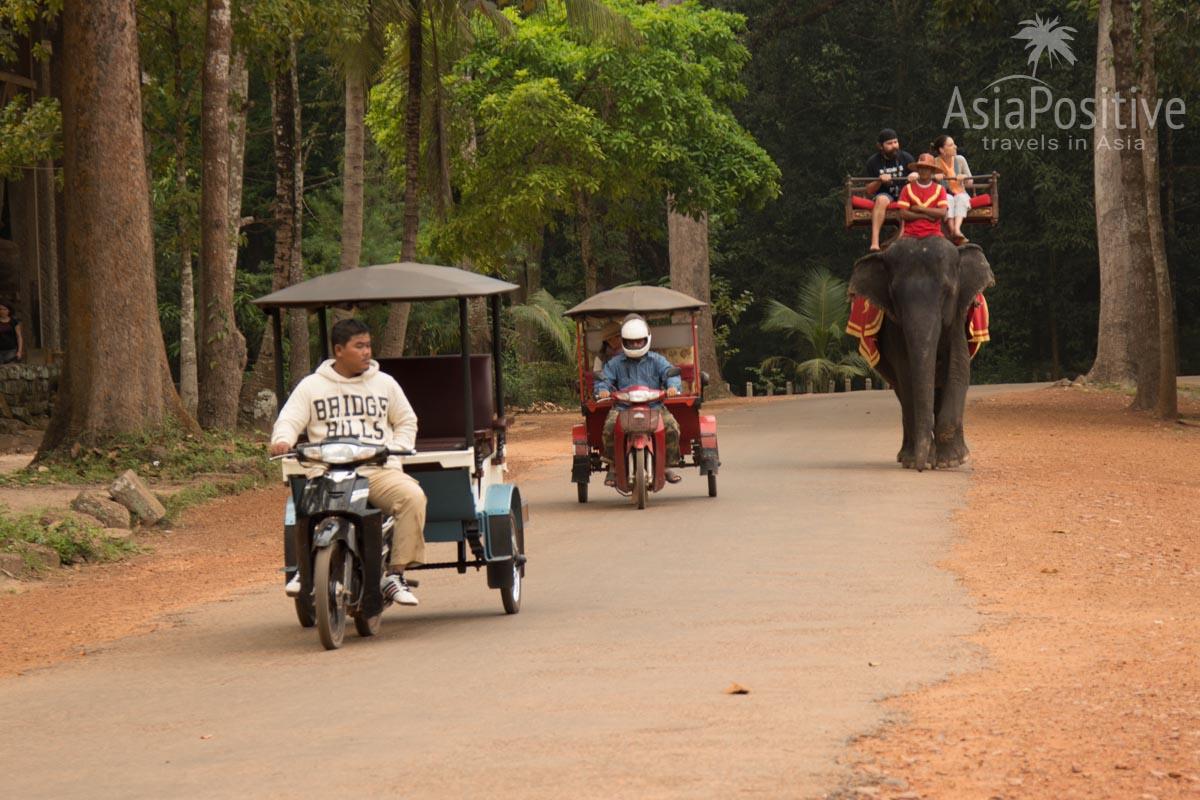 Тук-туки  - популярный транспорт для поездок по храмам Ангкора (Камбоджа) | Путешествия с AsiaPositive.com