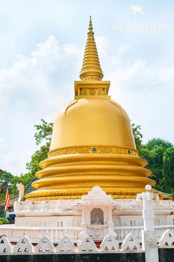 Золотая ступа возле гиганской статуи Будды и Пещерного Храма Дамбулла | Достопримечательности Шри-Ланки | Путешествия AsiaPositive.com