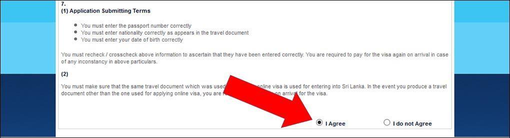 Согласие с правилами | Виза на Шри-Ланку онлайн: пошаговая инструкция и образец заполнения | Путешествия с AsiaPositive.com