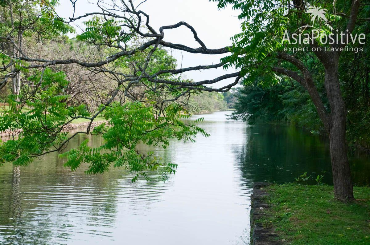 Вдоль внешних стен Сигирии тянется ров с водой | Сигирия - достопримечательность Шри-Ланки | Путешествия с AsiaPositive.com