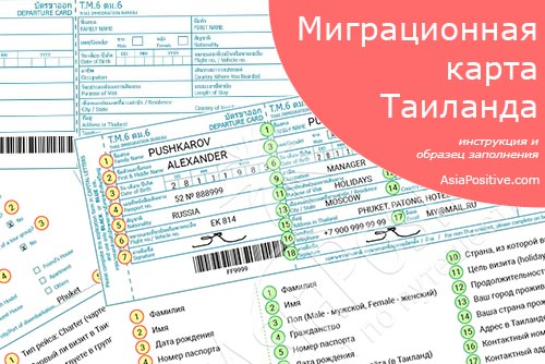 Инструкция и образец заполнения миграционной карты Таиланда