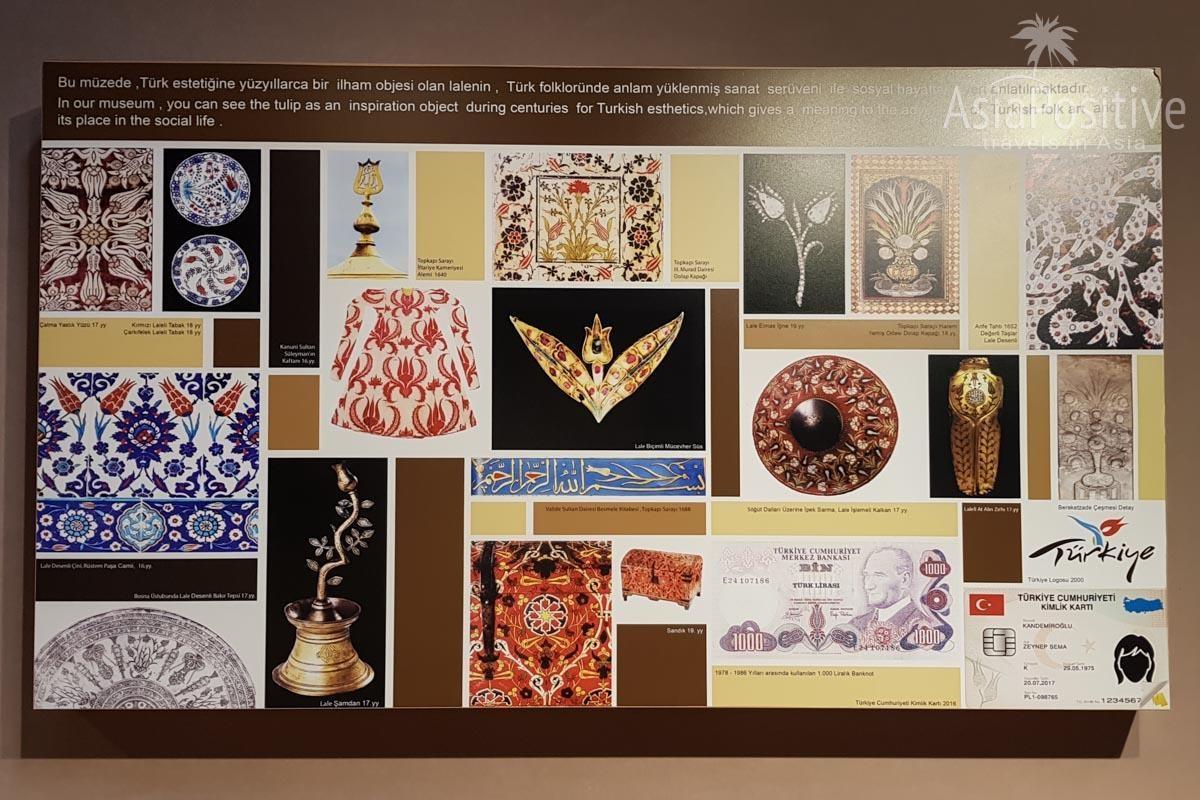 Тюльпан в Турции встречается на каждом шагу (стенд в Музее Тюльпанов) | Стамбул, Турция | Путешествия с AsiaPositive.com